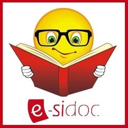 logo_esidoc